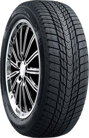 Roadstone Winguard Ice Plus фото